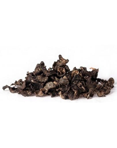 Getrocknete schwarze Wintertrüffel Brumale Getrocknete Trüffel Bild